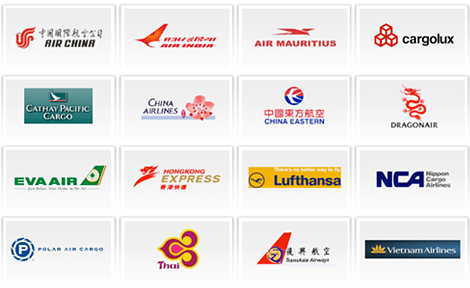 Displaying (19) Gallery Images For Major Airline Carrier Logo...